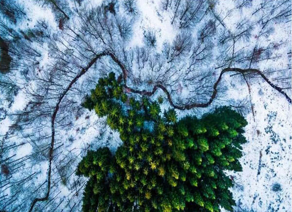 Best Aerial Photos of Nature